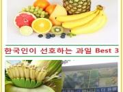 여러분은 어떤 과일을 좋아하시나요? 여름이 되면 시중에 나오는 과일이 많아지기도 하고 더우니까 과일을 더 챙겨 먹게 되는데요. 한국 농촌 경제원에서 수입 과일 동향을 분석한 자료에 따르면 한국 사람이 가장 선호하는 수입 과일 중 1위가 바나나로 가장 많았고 오렌지, 포도가 그 뒤를 이었다고 합니다. 2000년과 비교해 바나나와 오렌지는 부동의 1, 2위 자리를 지키고 있으니 정말 한국인이 좋아하는 과일이라고 할 수 있겠죠. 바나나 이야기가 나왔으니까 생각이 났는데요. 얼마 전에 대구에서 바나나가 열렸다는 뉴스가 있었습니다. 한 식당에 있는 바나나 나무에서 열렸다고 하는데요. 열대지방에서만 열리는 바나나가 대구에 열렸다니 정말 놀라운 일이죠. 아무래도 지구 온난화 현상으로 인한 기후 변화로 이런 현상이 생긴 것 같습니다. 재미있는 일이라는 생각이 드는 한편 좀 슬프기도 하네요. 요즘 한국에서도 슈퍼에서 조각 과일 파는 곳이 많으니까 한국에 오셨을 때 한국에만 있는 과일을 찾아서 드셔보시는 것도 좋겠죠. ^^